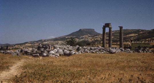 Ethnic Origin Language and Literature of the Phoenicians